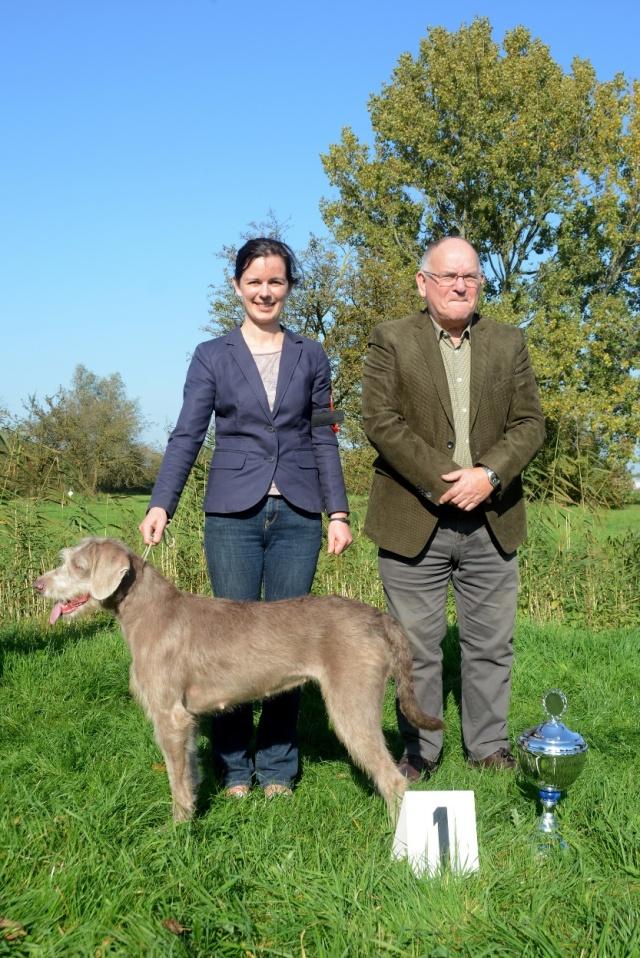 Kampioenschapsclubmatch Slowaakse Ruwharige Staande Hond